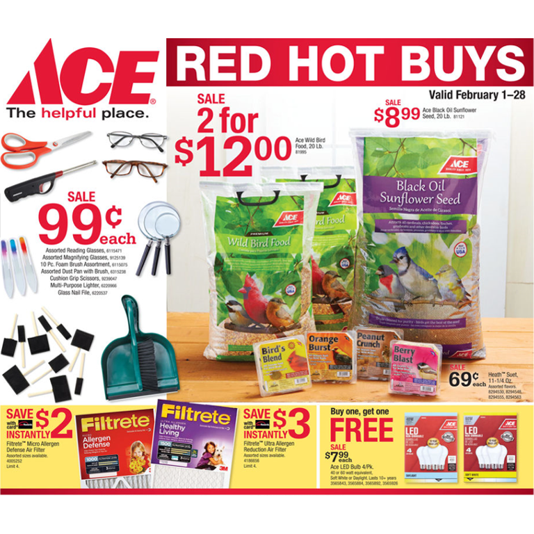 Ace Hardware February 2019 Specials Flyer