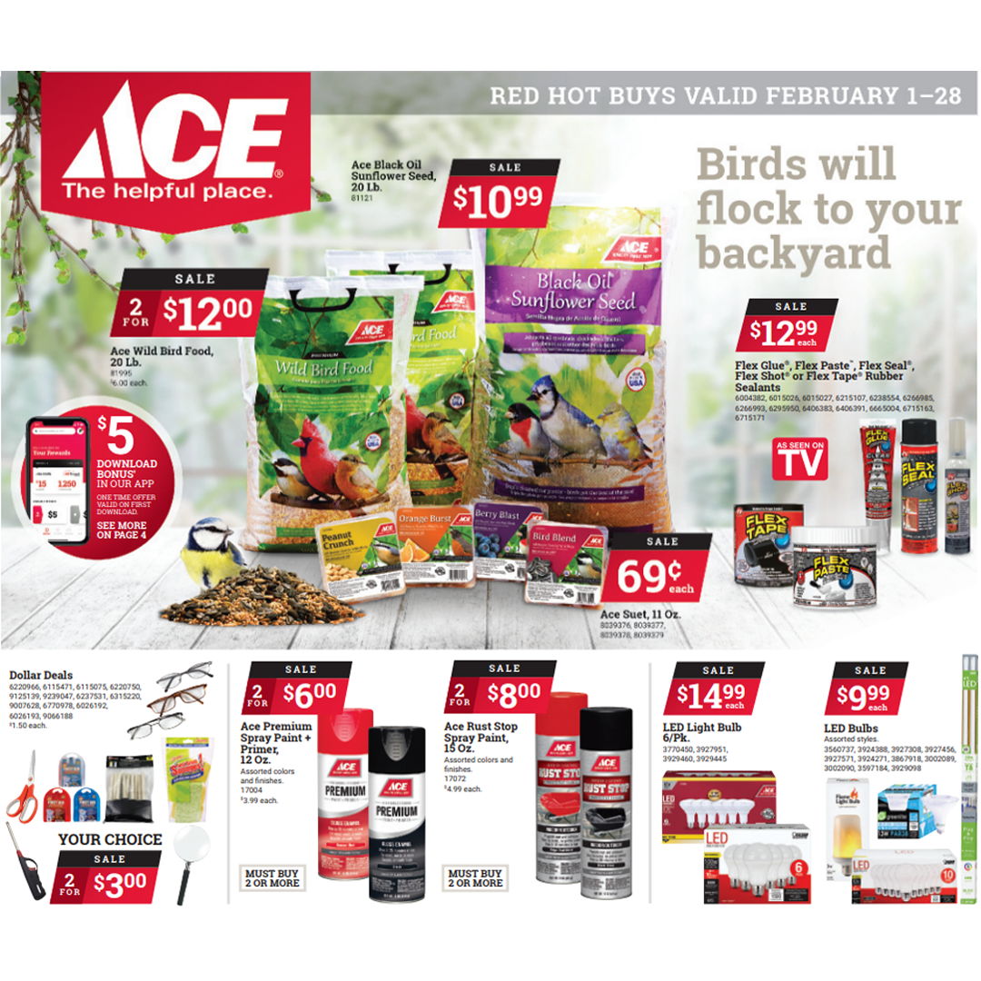 Ace Hardware Red Hot Buys valid until February 28, 2021